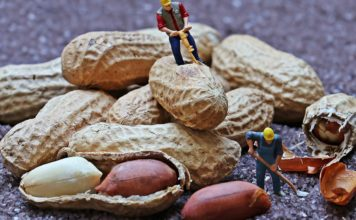 Nutritional And Health Benefits Of Peanuts