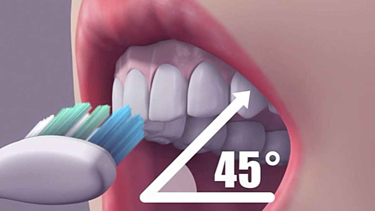 Keep the toothbrush at a 45-degree angle to the gums